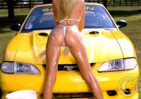 yellow-saleen-hot-ass-392